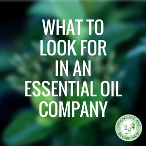 to-look-for-in-an-essential-oil-company