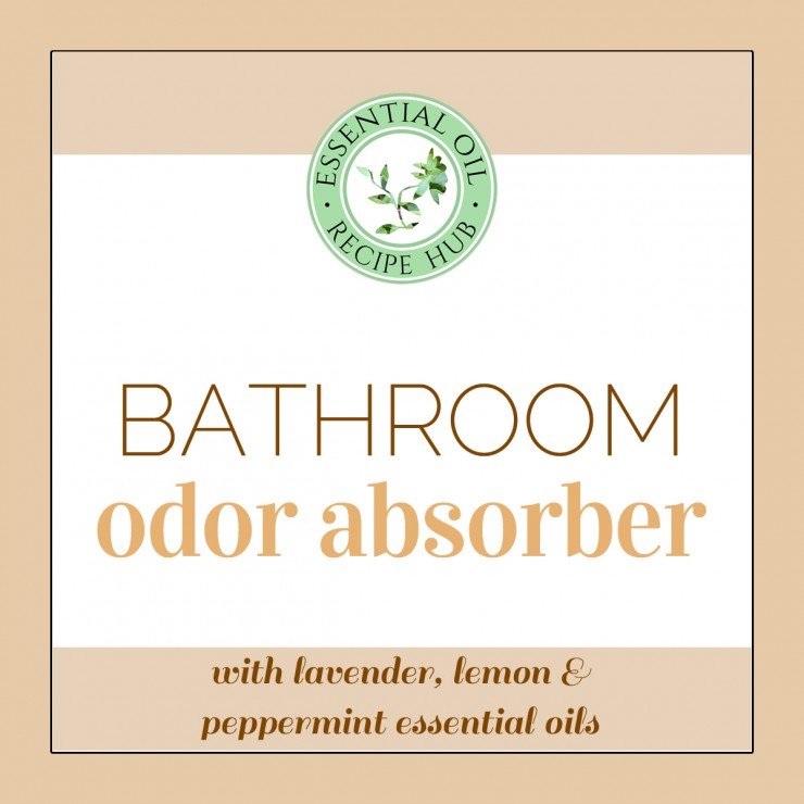 bathroom odor absorber